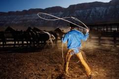 cowboy_lasso